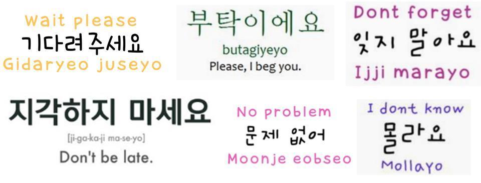 bahasa korea Bahasa korea memiliki morfologi yang aggluginatif dengan tata bahasa (syntax) yang serupa dengan bahasa jepang, yakni sov (subject + object + verb) seperti bahasa jepang, dan vietnam, bahasa korea banyak sekali meminjam kosakata dari bahasa tionghoa yang tidak berkaitan.