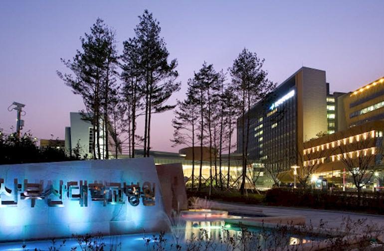 10 universitas terbaik di korea selatan dan jurusannya rh hotcourses co id Gambar Rumah Sakit Rumah Sakit Siloam